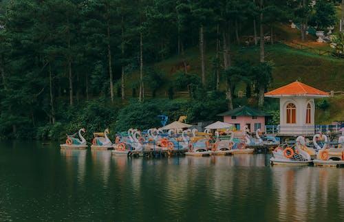 Бесплатное стоковое фото с лодки, на открытом воздухе, озеро, причал