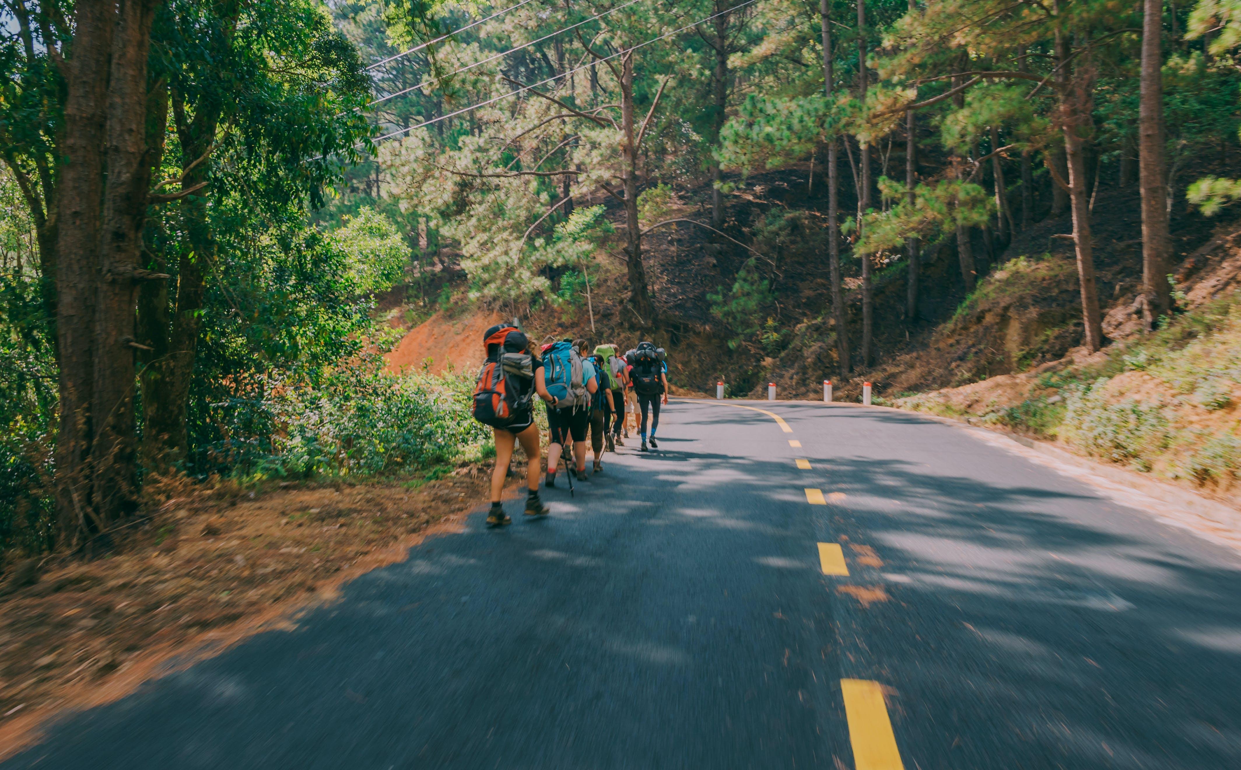 Kostnadsfri bild av äventyr, dagsljus, människor, väg