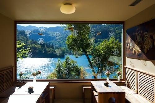 原本, 房間, 斯洛文尼亚, 景觀 的 免费素材照片