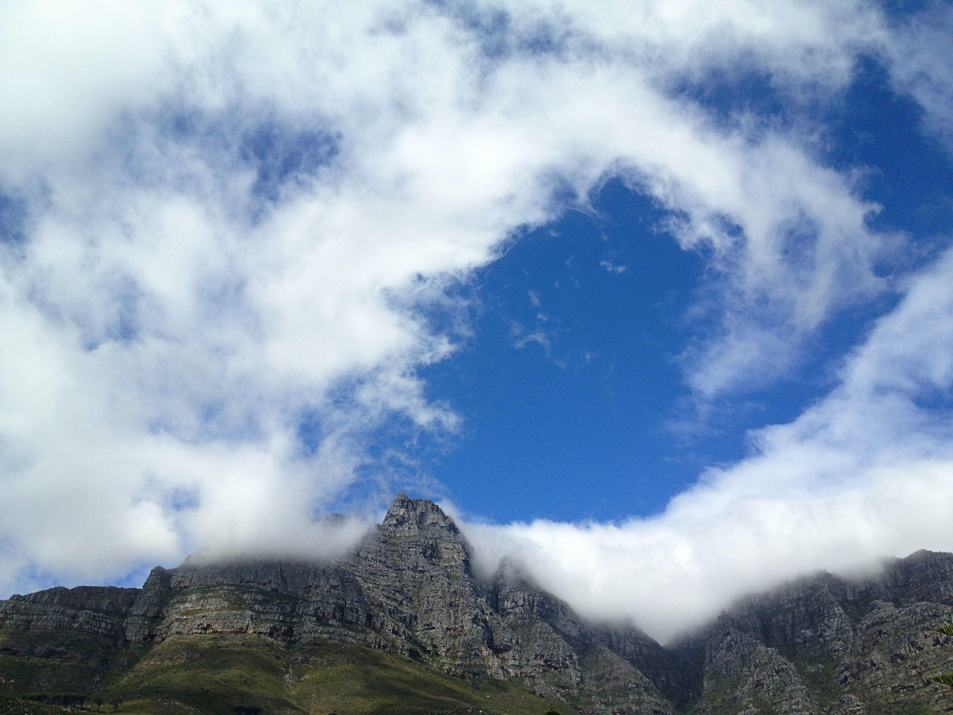 Ingyenes stockfotó alacsony szögű felvétel, Dél-Afrika, domb, fa témában