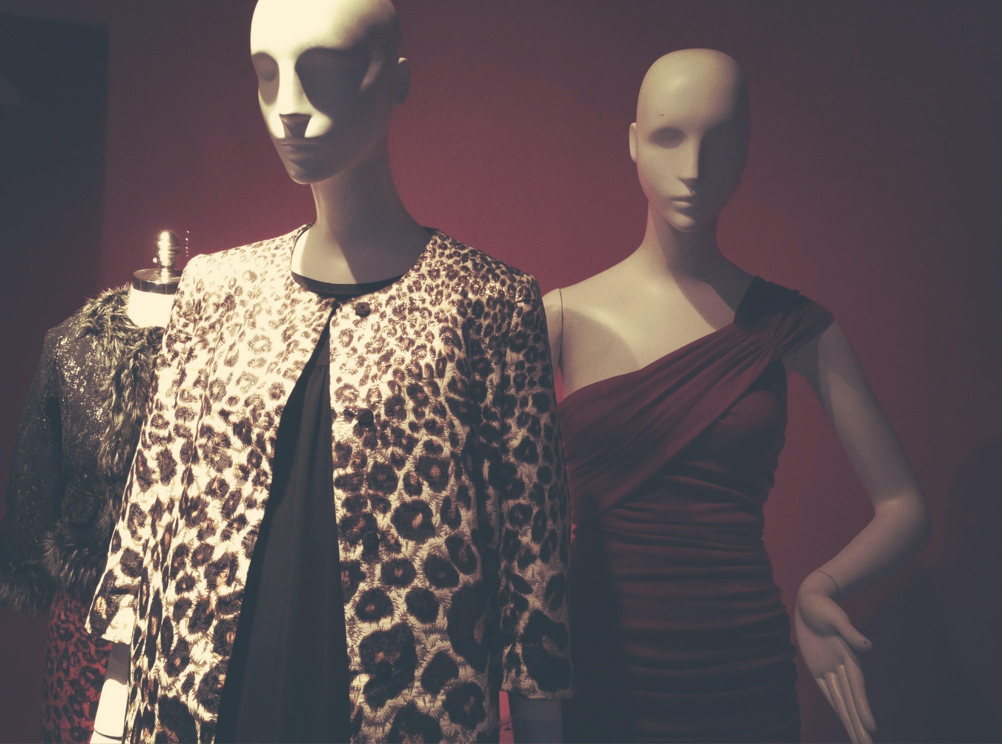Free stock photo of dress, fashion, man, mannequin