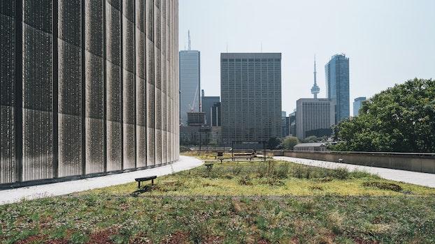 Free stock photo of bench, city, landscape, skyline