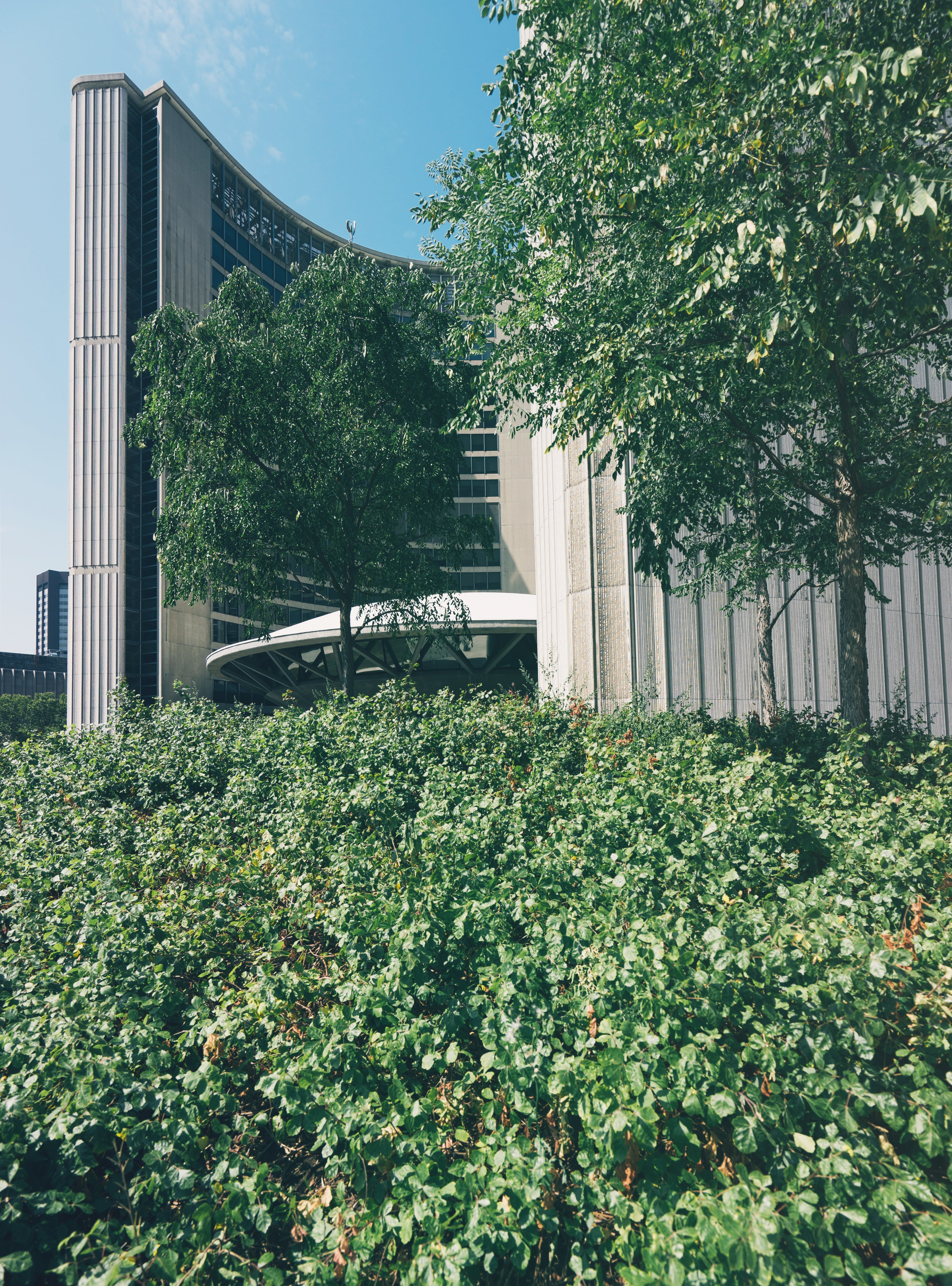 Beige Building Near Trees in City