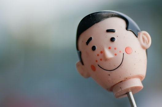 Free stock photo of head, toy, macro