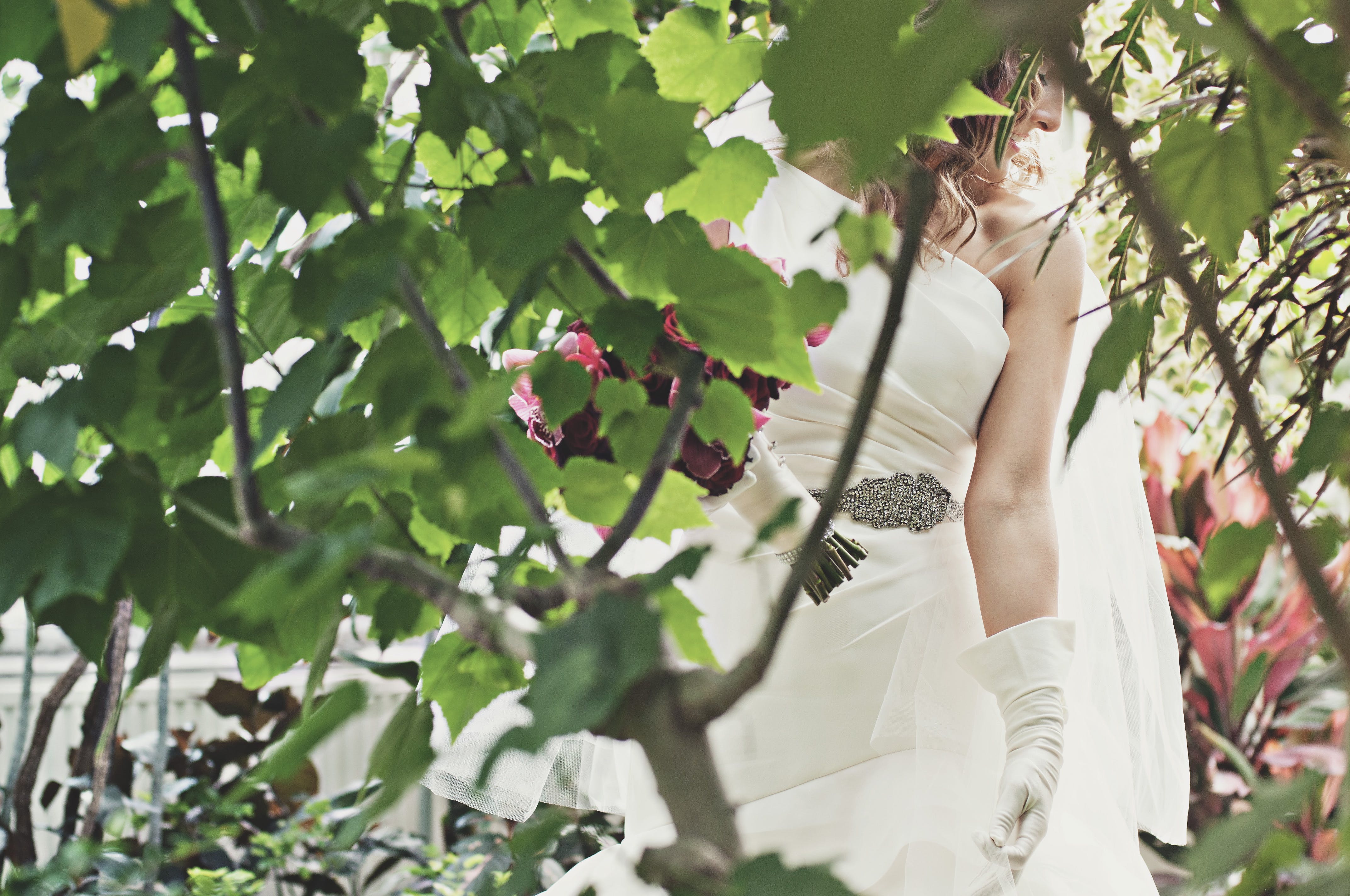 Woman Wearing White Wedding Dress Near Green Trees