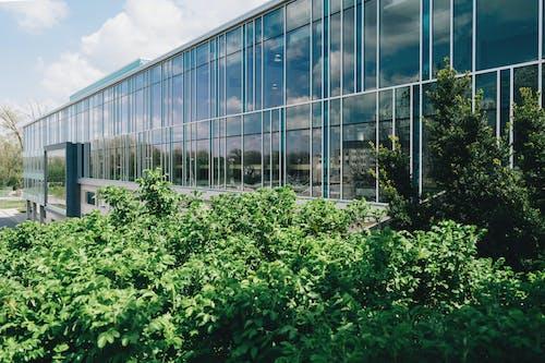 Ilmainen kuvapankkikuva tunnisteilla arkkitehdin suunnitelma, arkkitehtuuri, heijastus, kasvikunta