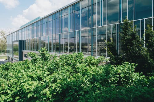 Glass Building Near Tree Grove