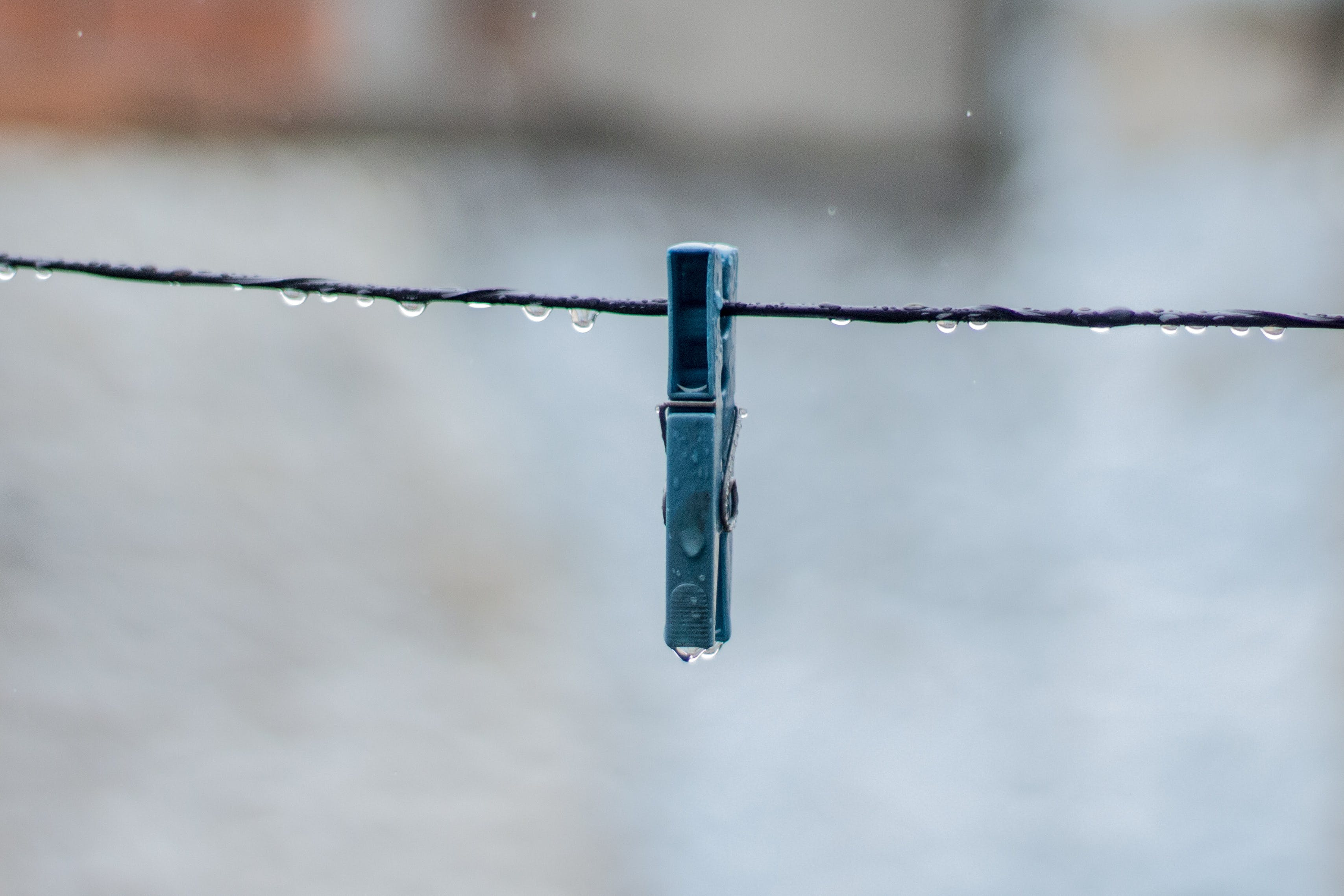 Black Clothes Peg With Dew Drop Closeup Photography