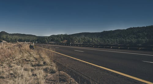 Fotos de stock gratuitas de arboles, asfalto, autopista, carretera