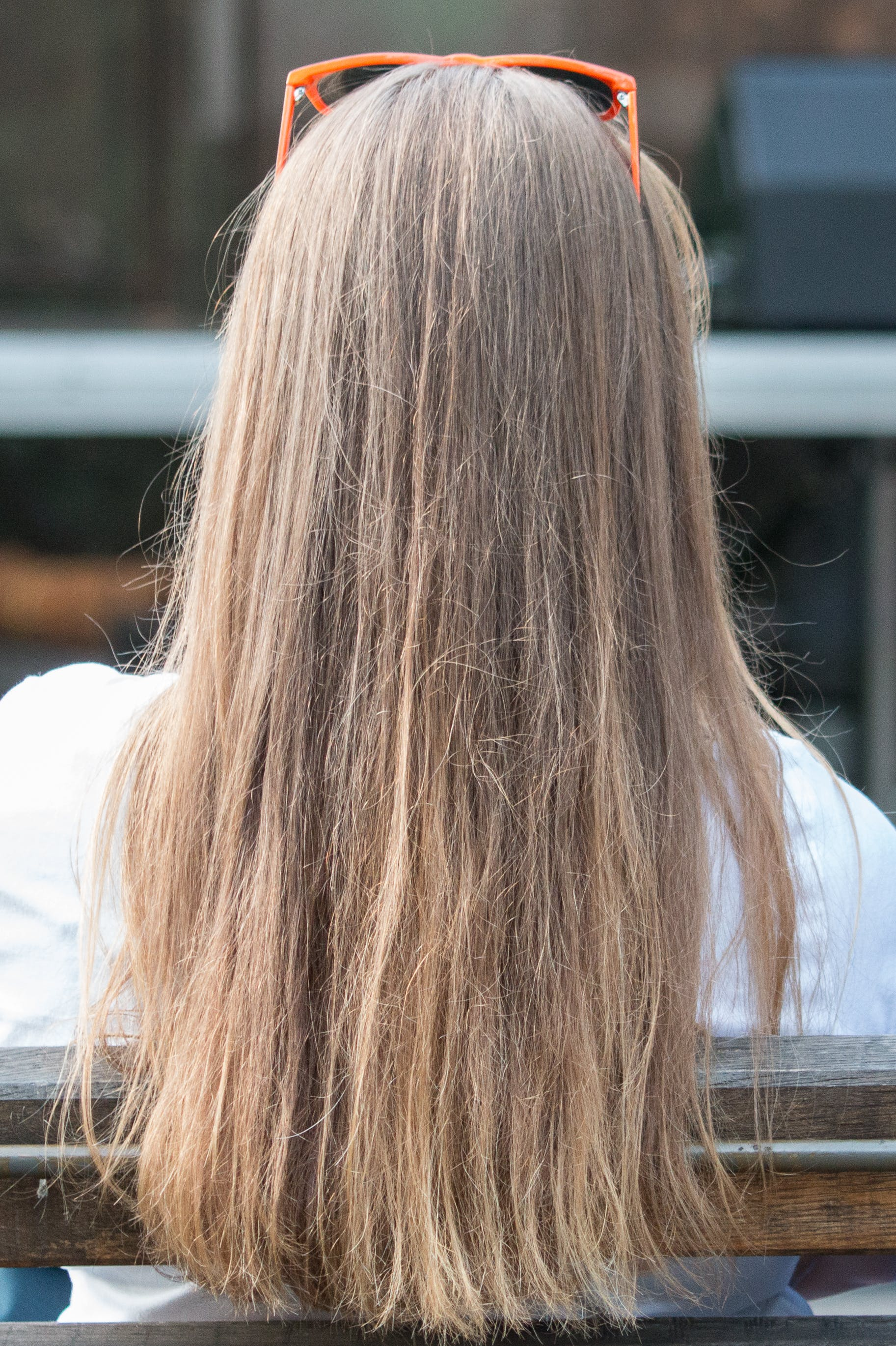 Free stock photo of hair
