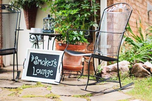 Fotos de stock gratuitas de cacerola, firmar, jardín, luz de día