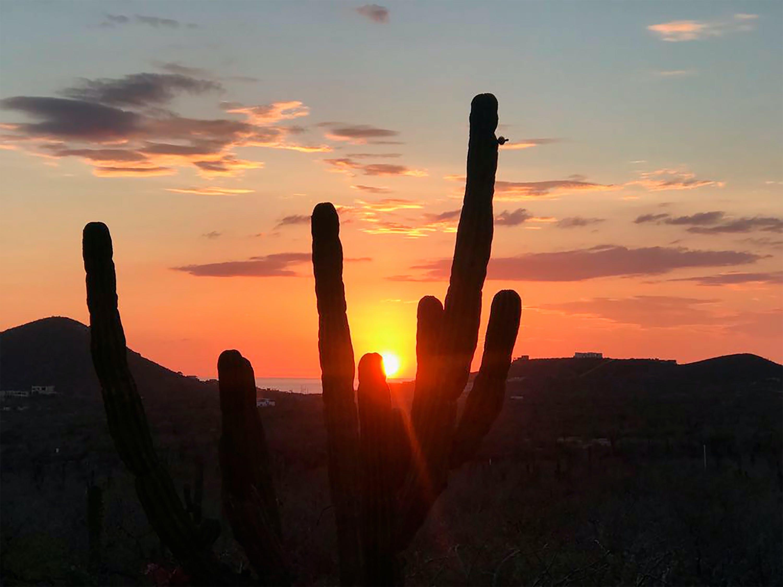 Free stock photo of desierto de baja california, los cabos, mexico, mochileros