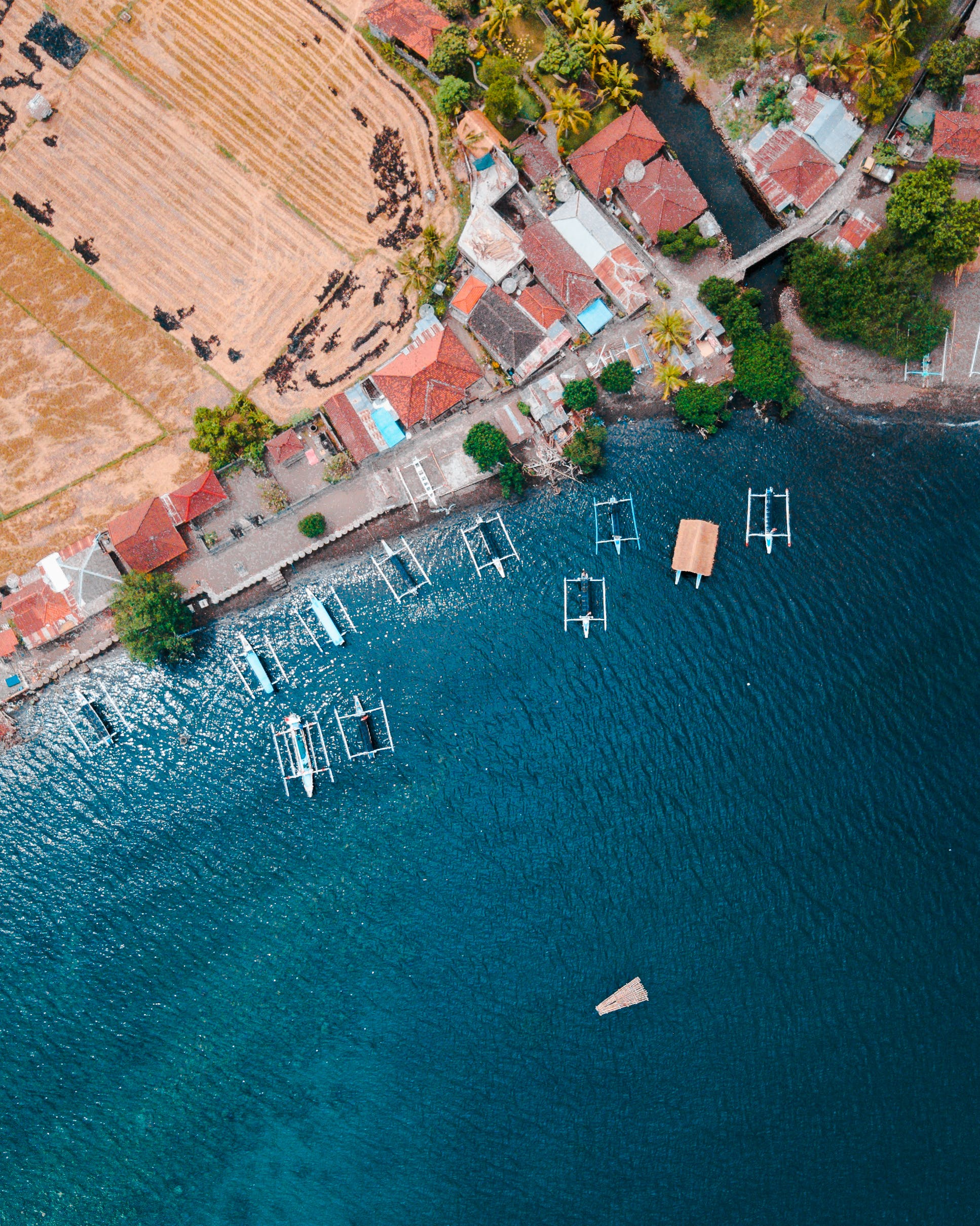 Aerial Photography of Houses Near Body of Water With Boat