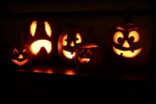 Δωρεάν στοκ φωτογραφιών με halloween, Jack o'lantern, κολοκύθα, κολοκύθες