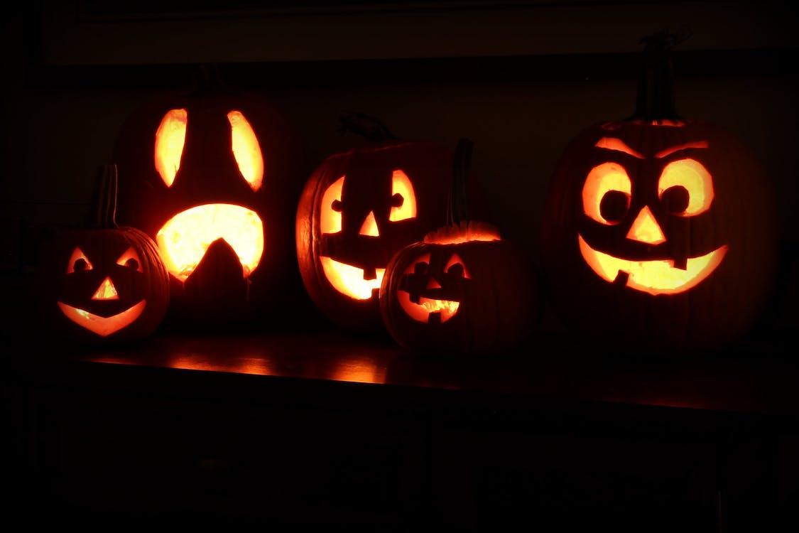 Δωρεάν στοκ φωτογραφιών με halloween, Jack o'lantern, κολοκύθα