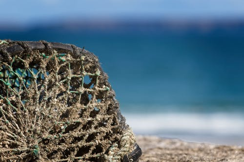 Free stock photo of #fishing, #net, #ocean, #sea