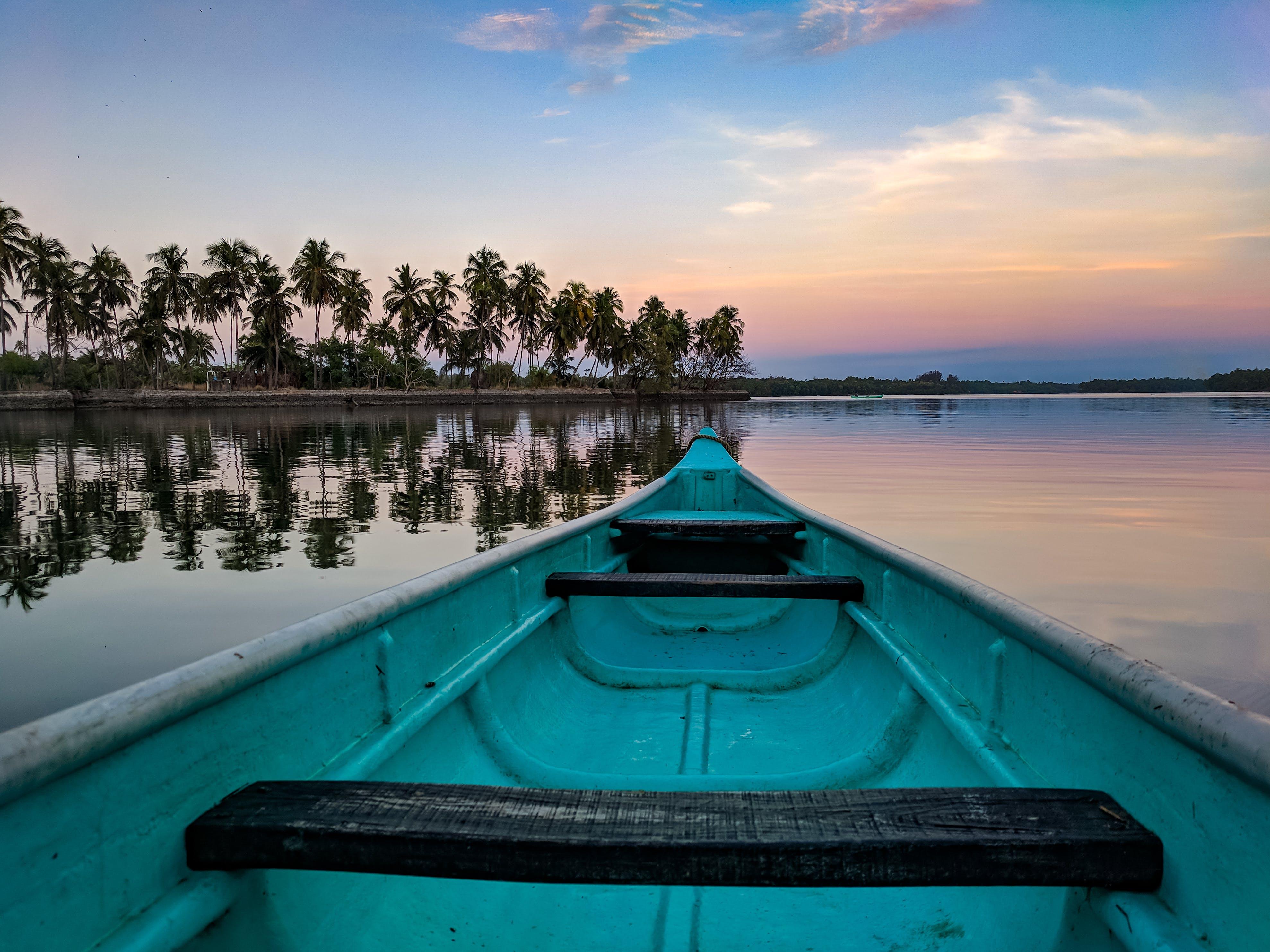 Foto d'estoc gratuïta de aigua, arbres, barca, barca de rems