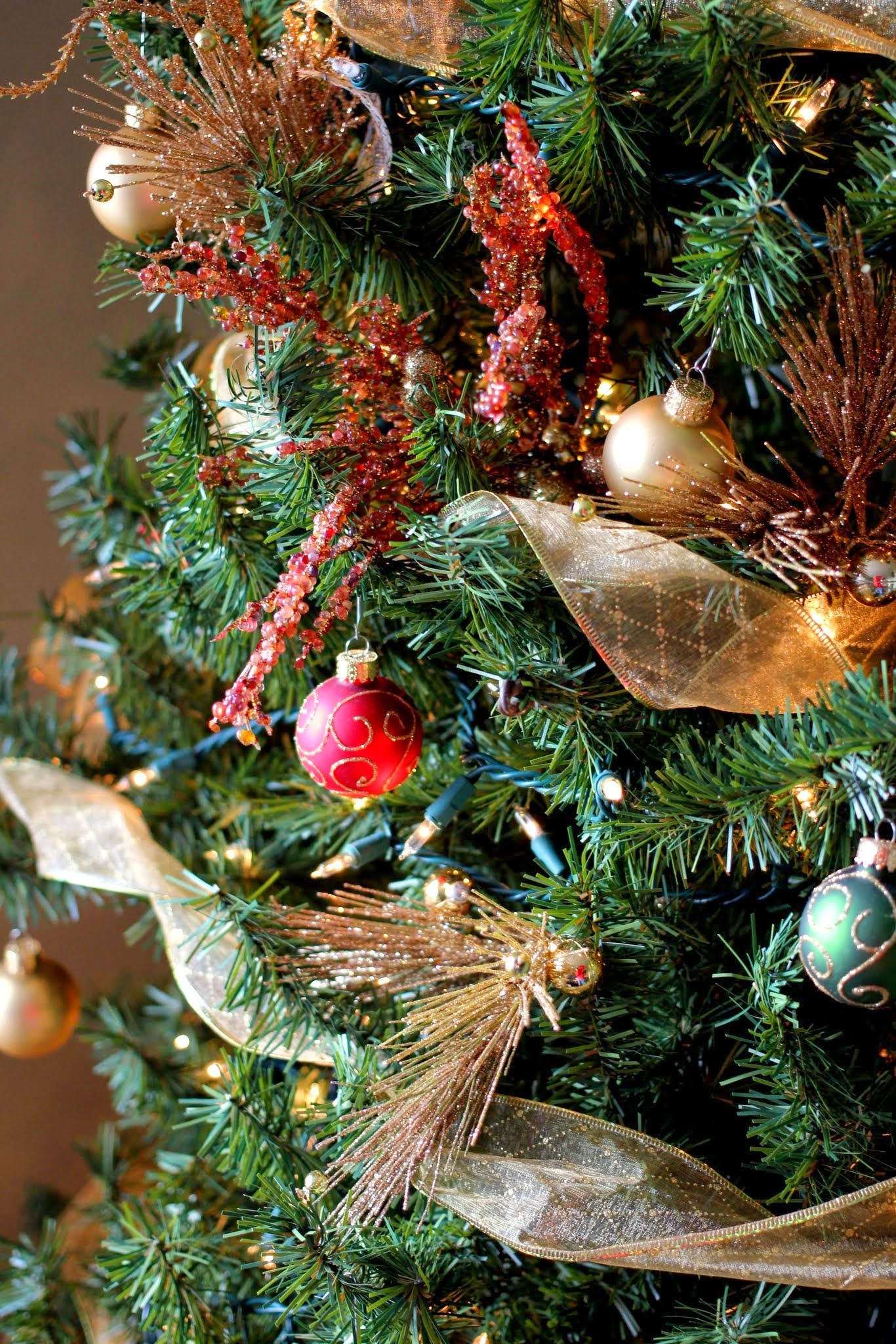 Free stock photo of christmas, christmas tree