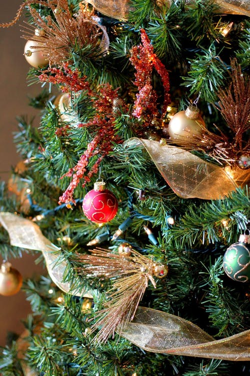 คลังภาพถ่ายฟรี ของ คริสต์มาส, ต้นคริสต์มาส