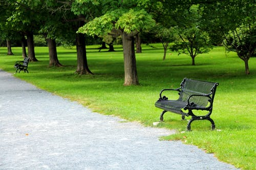 Free stock photo of bench, park, path