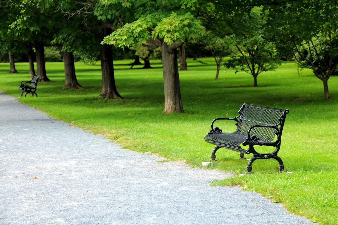Безкоштовне стокове фото на тему «лавка, парк, шлях»