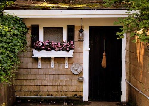 Безкоштовне стокове фото на тему «двері, квіти, країна, село»