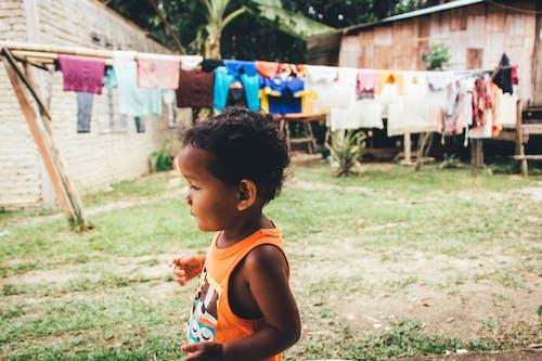 낮, 사람, 아시아 어린이, 어린이의 무료 스톡 사진