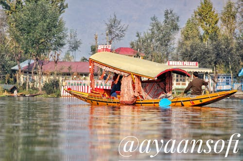 Kostnadsfri bild av #dal lake #shikarah #kashmir #srinagar #beauty #ca