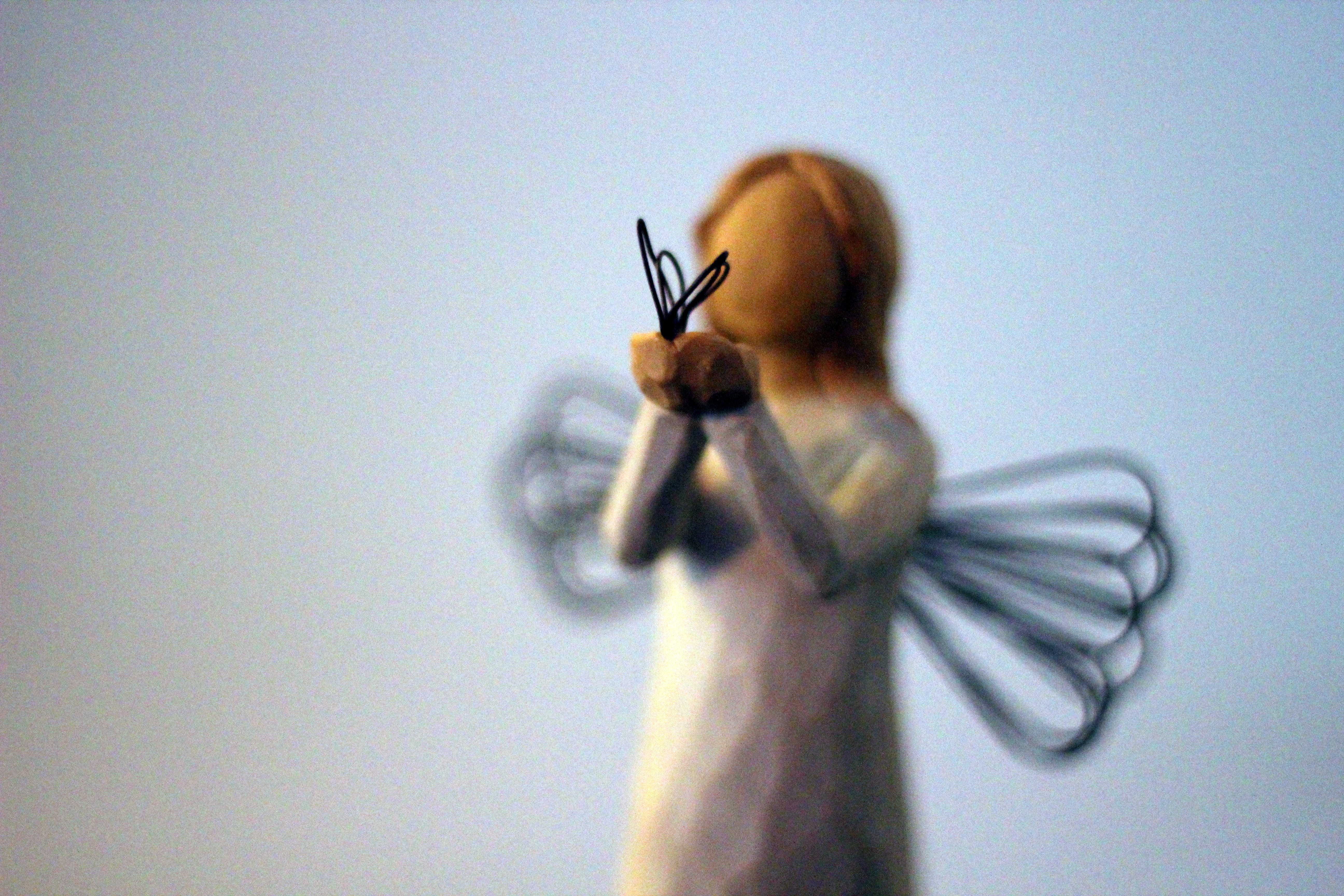 Free stock photo of angel with butterfly