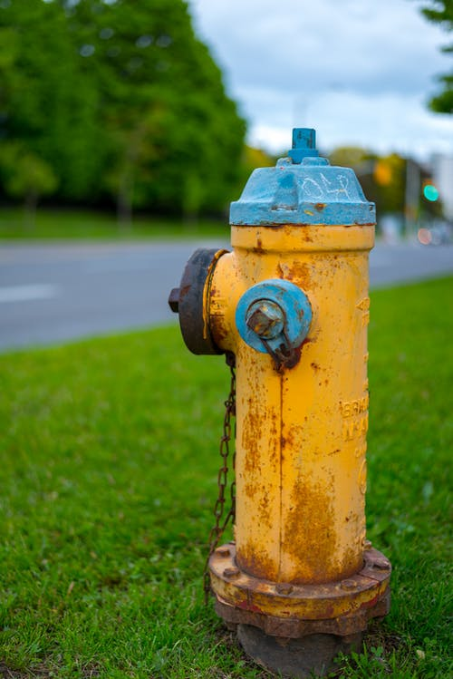 Free stock photo of colorful, fire hydrant, hydrant