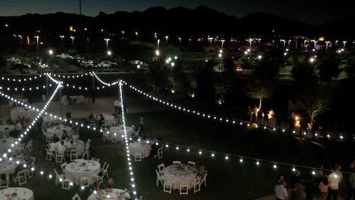 Free stock photo of bistro lights, grass, lawn, night