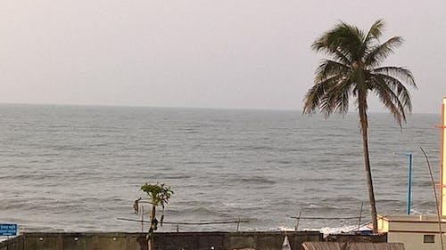 Free stock photo of sea beach