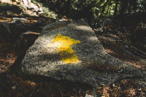 ağaçlar, işaret, Kaya, manzara içeren Ücretsiz stok fotoğraf