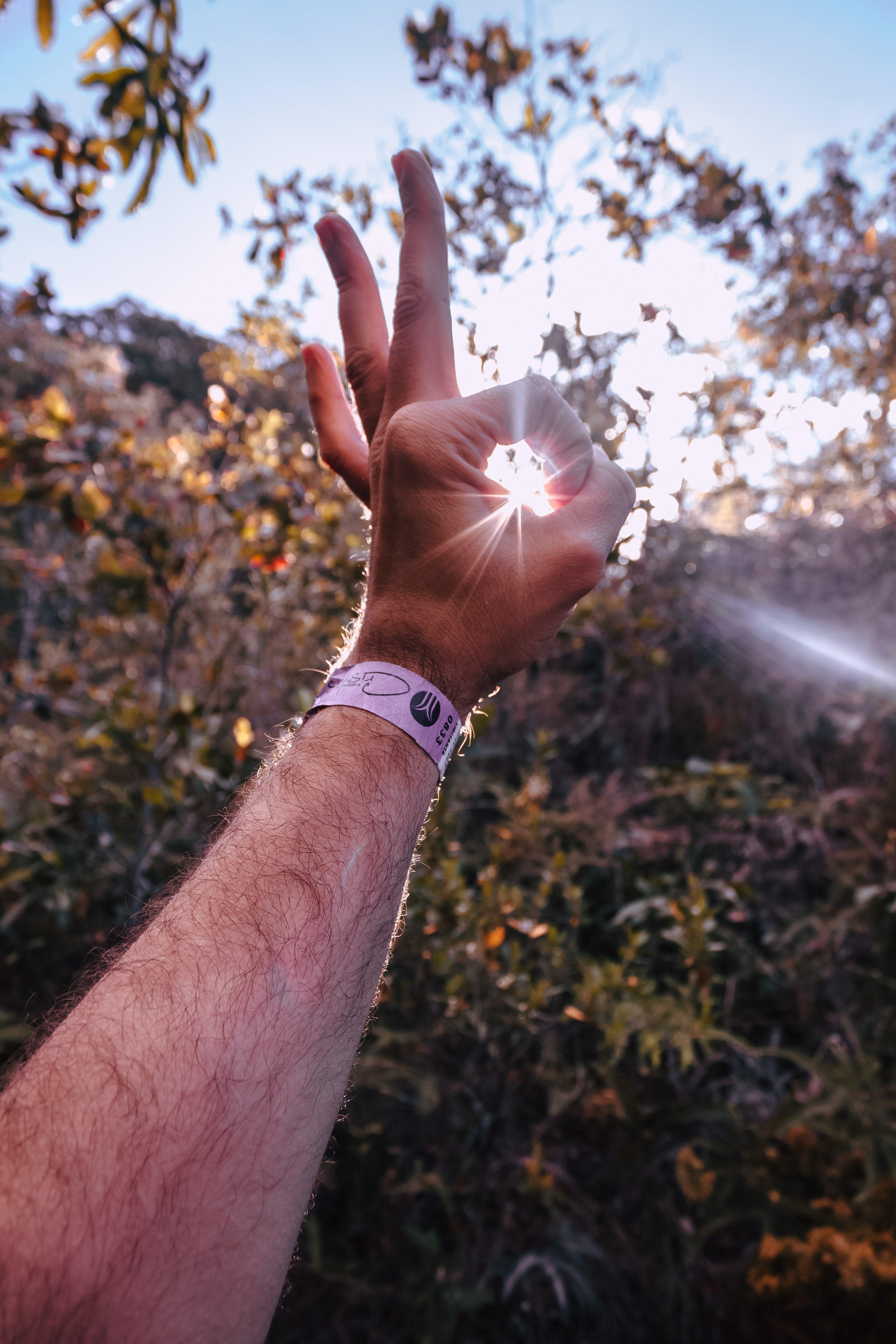 Δωρεάν στοκ φωτογραφιών με δάχτυλα, ηλιακό φως, Καλός, χέρι
