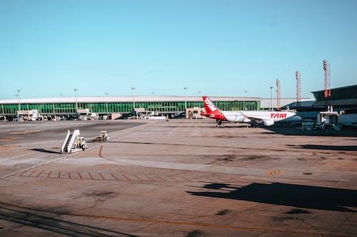 Foto d'estoc gratuïta de aeronaus, aeroport, arribada, asfalt