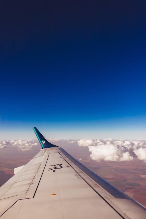 dagslys, fly, flyrejse