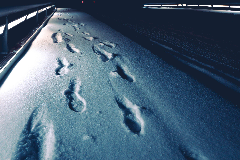Бесплатное стоковое фото с зима, лед, простуда, следы