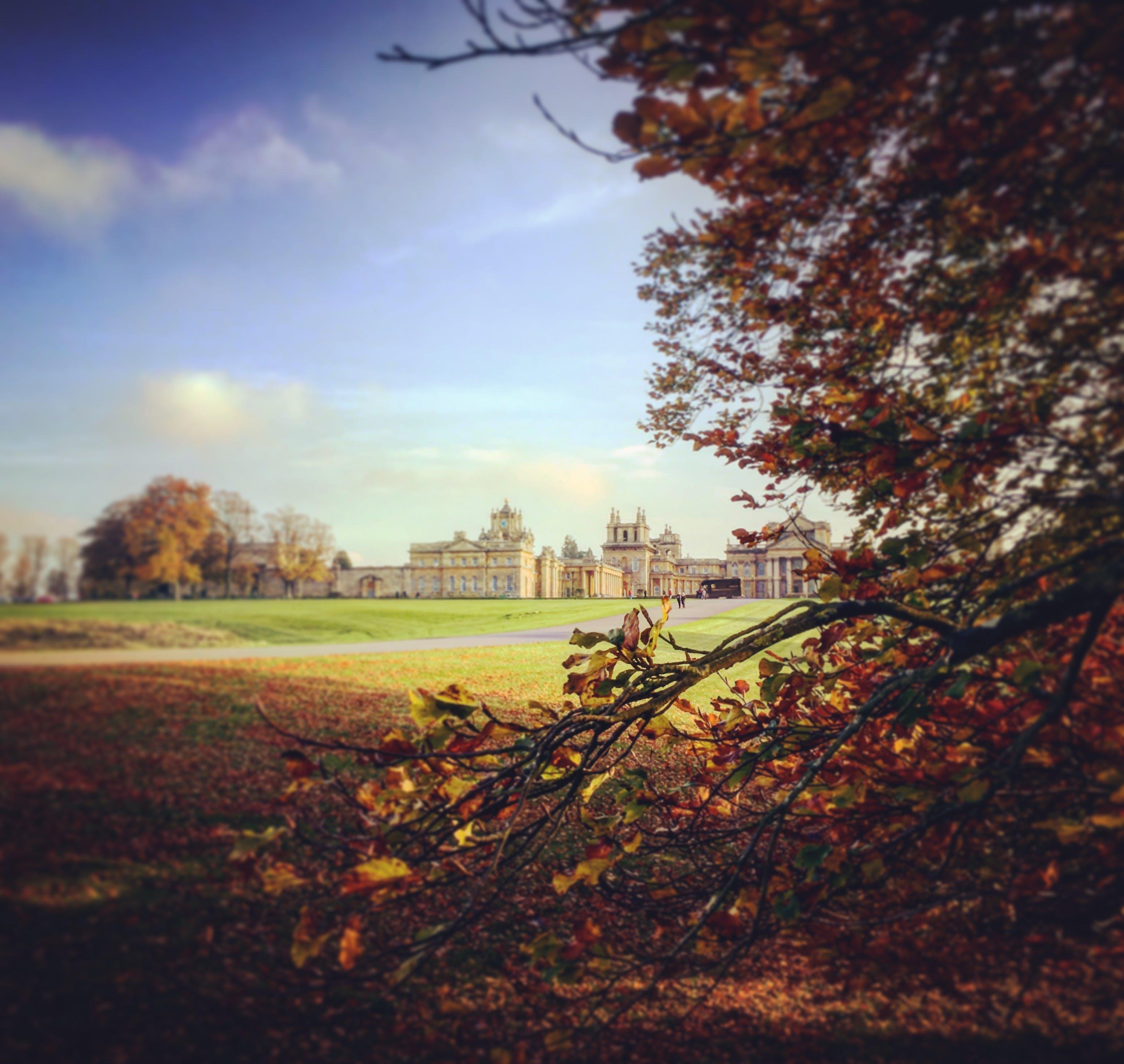 Free stock photo of autumn, autumn colors, blenheim palace, Historic Building