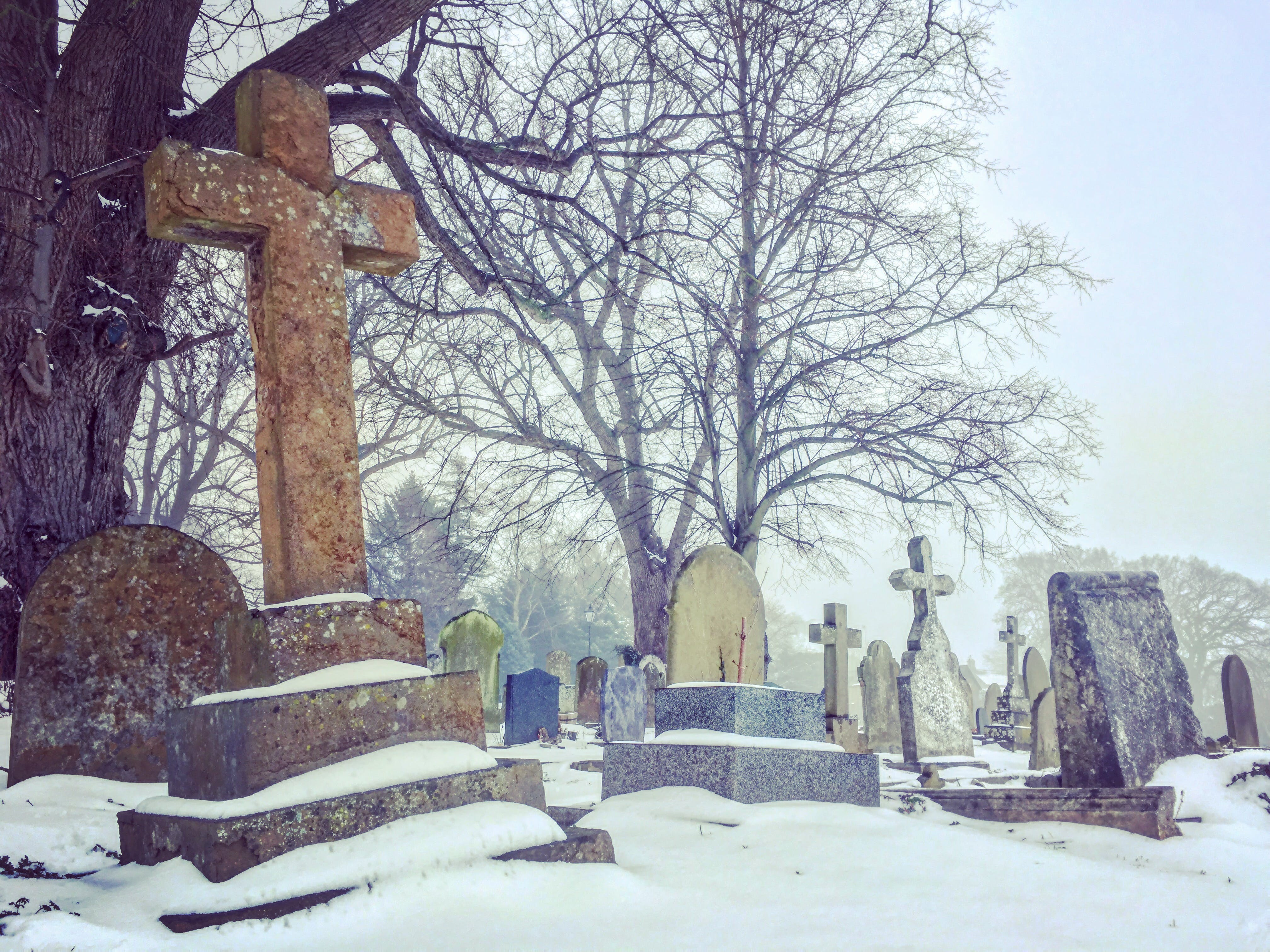 Free stock photo of cross, graveyard, snow covered, snowy
