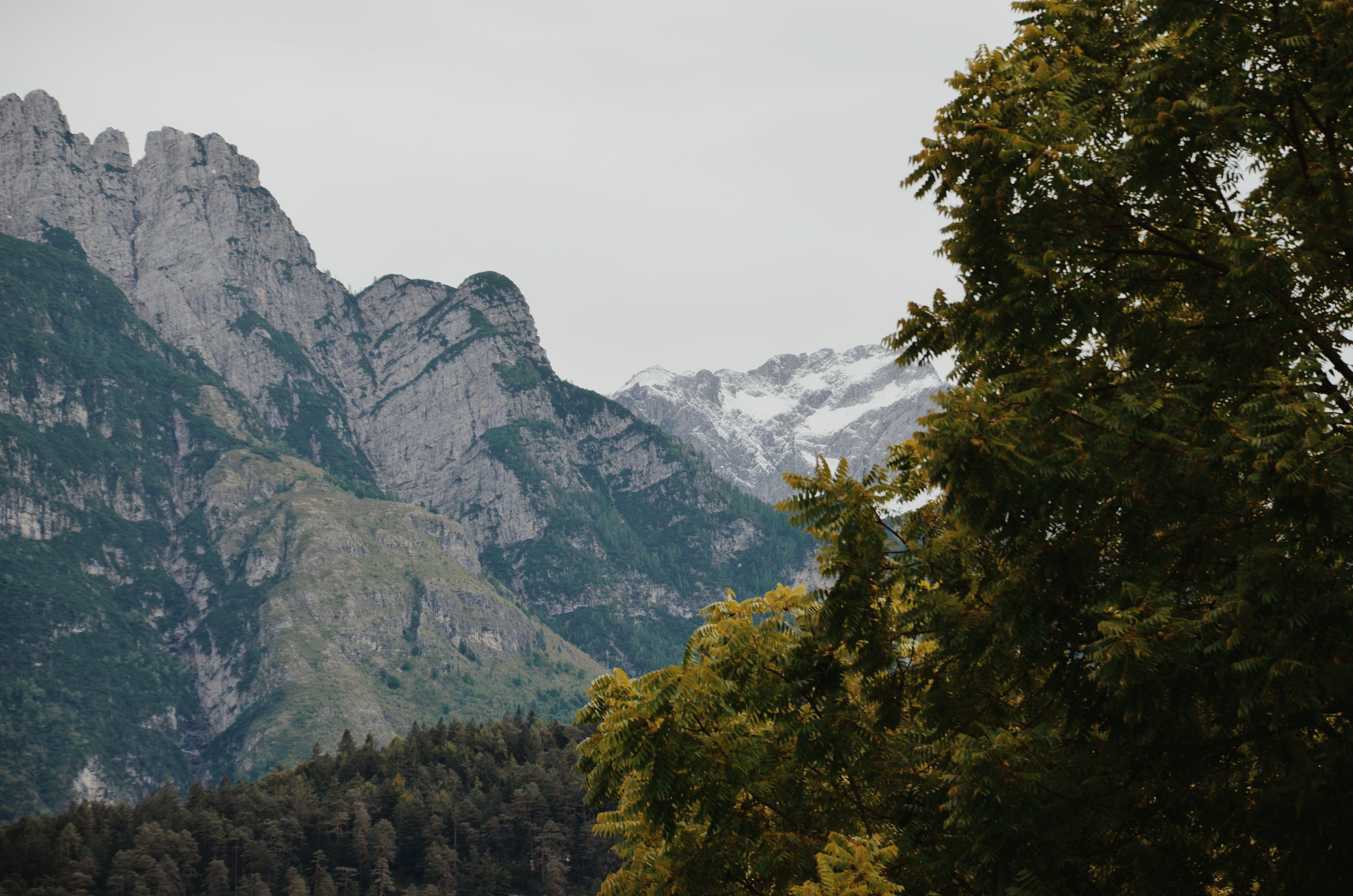 Foto d'estoc gratuïta de llum del dia, muntanya, muntanya rocallosa, natura