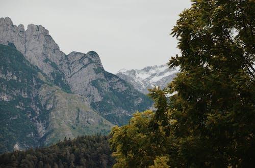 Fotobanka sbezplatnými fotkami na tému denné svetlo, hora, krajina, malebný