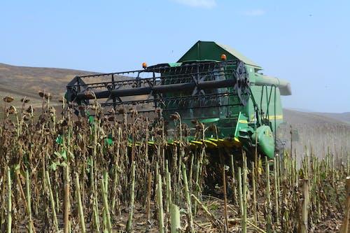 Free stock photo of armenia, artsakh, harvest, Havester
