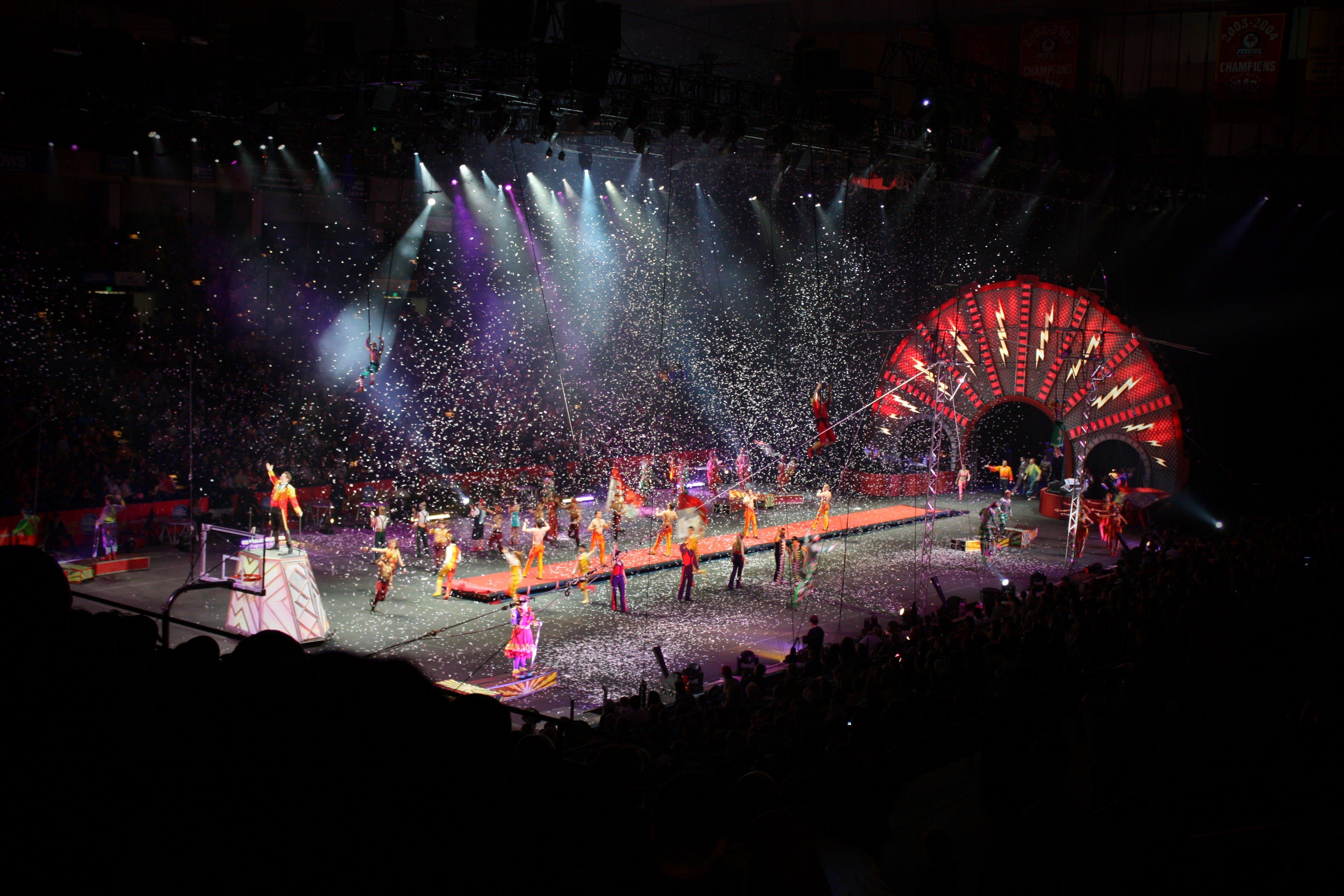 Základová fotografie zdarma na téma cirkus