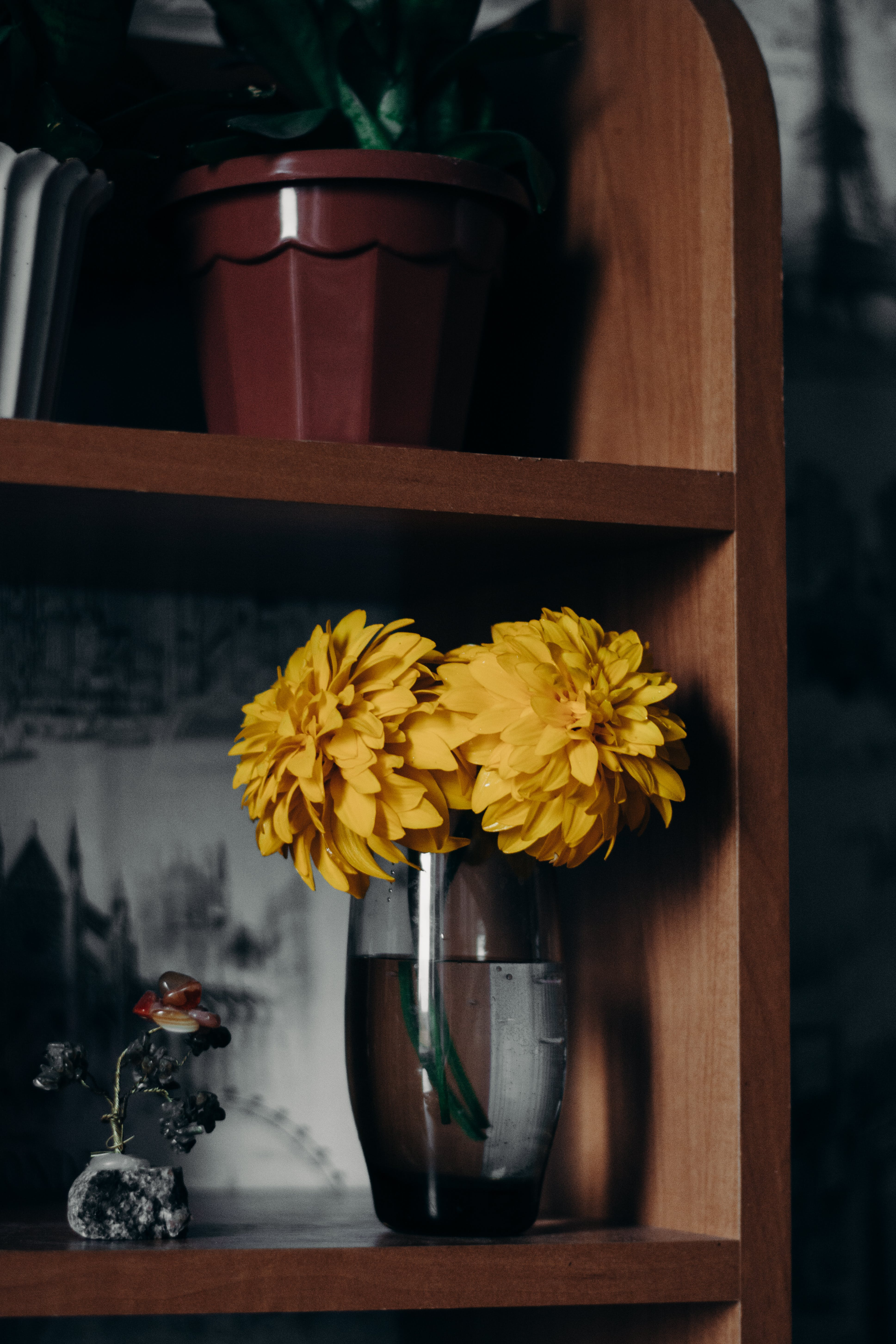 Yellow Petaled Flowers On Clear Glass Vase