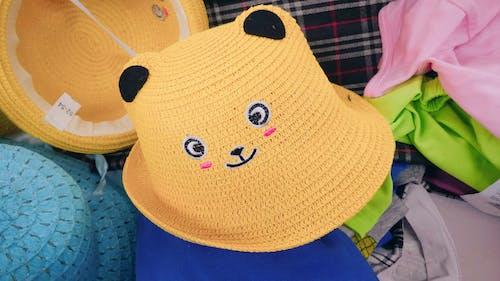 Free stock photo of eye, hat, In Shop, kitten