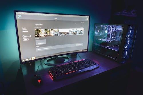 คลังภาพถ่ายฟรี ของ การเล่นเกม, กิ้งก่ามอนิเตอร์, จอภาพ