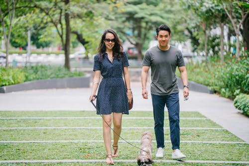 Couple Walking With Dog on Green Grass