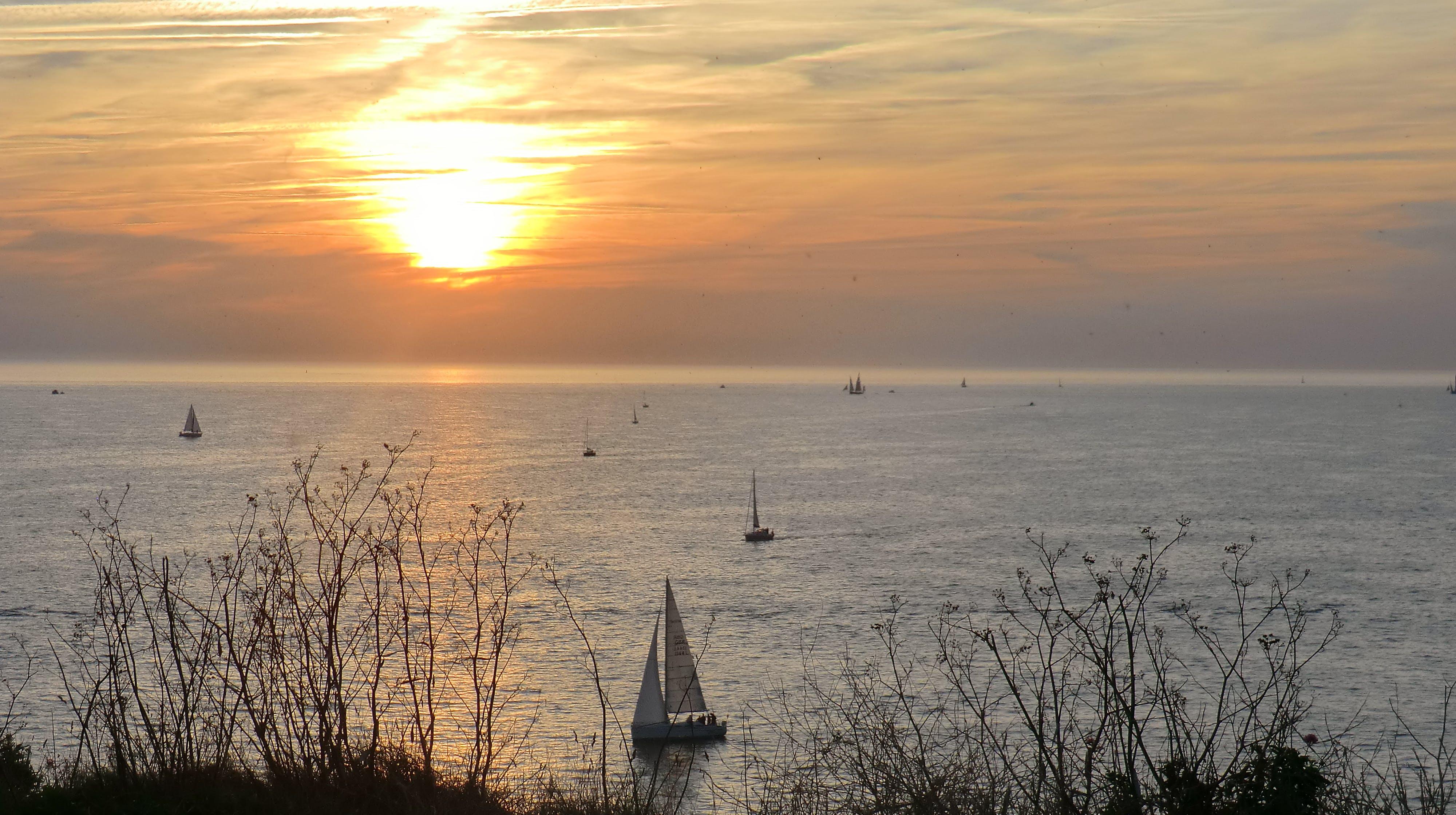 Free stock photo of boats, sea, sunset