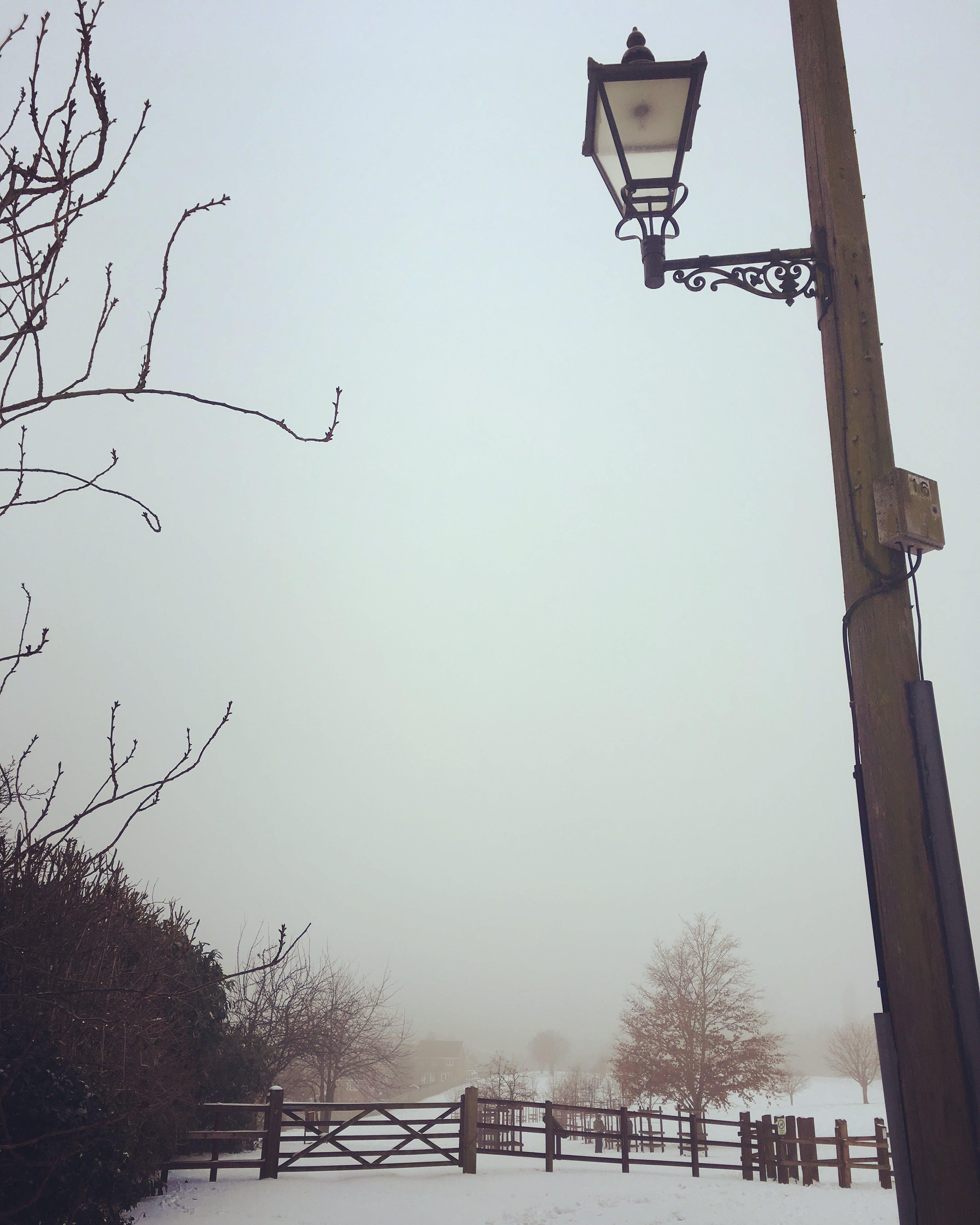Free stock photo of lamppost, Narnia Lampost, snow, winter