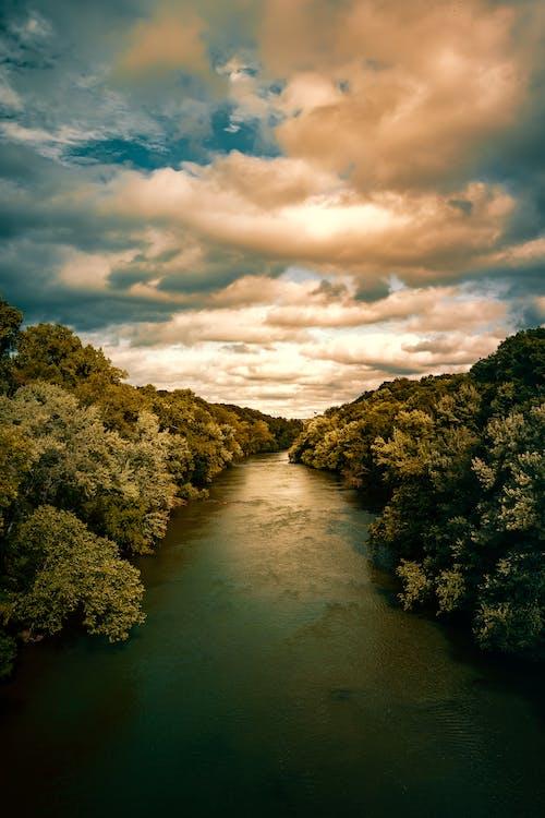 Gratis lagerfoto af bro